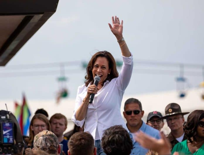 Ron Johnson Says Kamala Harris Trip Is a Plot to Distract Attention