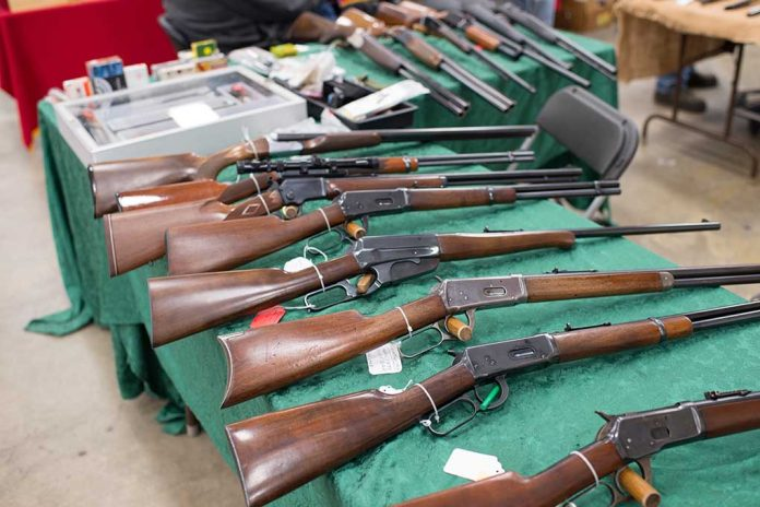 New Study Finds Inconclusive Link Between Gun Sales and Violence